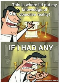 Non Existent Existentialist: This is where I'd put my  knowledge of  OO objective reality!  IF I HAD ANY  on existent exstentialist memes