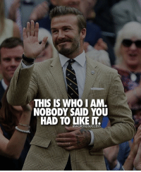 Always be yourself👊👌 words2success - LIKE & TAG FRIENDS TO INSPIRE!!: THIS IS WHO I AM  NOBODY SAID YOU  HAD TO LIKE  @WORDS SUCCESS Always be yourself👊👌 words2success - LIKE & TAG FRIENDS TO INSPIRE!!