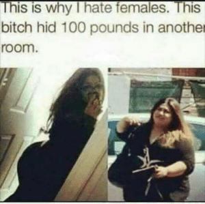 Anaconda, Bitch, and Another: This is why I hate females. This  bitch hid 100 pounds in another  room. Dont read this