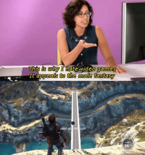 Video Games, Games, and Video: This is why I hate-video games  It appeals to the male fantasy  uslarmodin  REAC  JUMP OF THE CLIFF  35a me irl
