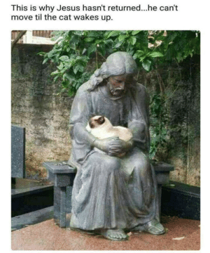 Easter memes: This is why Jesus hasn't returned...he can't  move til the cat wakes up. Easter memes