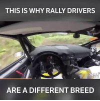 Driving, Memes, and Boost: THIS IS WHY RALLY DRIVERS  ARE A DIFFERENT BREED Some incredible driving from European rally champ @chrisingramrally . . carmemes jdm turbo boost tuner carsofinstagram carswithoutlimits carporn instacars supercar carspotting supercarspotting stance stancenation stancedaily racecar blacklist cargram carthrottle drift itswhitenoise