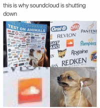 -F: this is why soundcloud is shutting  down  ESE COMPANIES  TEST ON ANIMALS  3M 409 s  ANIMALS OralB OFF  REVLON  PANTEN  BOSS 1 111AD'': 'mme  ,曲00 dao (@  ChapStick CONIRGNI  GHT  ARD  Pampers  Rogaine  Run.烏1.vies /hahe  &M's REDKEN -F