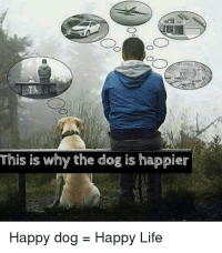 Life, Happy, and Be Happy: This is why the dog is happier  Happy dog-Happy Life Our situation may influence how we feel, but it does not dictate how we feel. Choose to be happy.