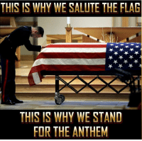 Standing for the National Anthem is a tribute to every life that was given away to protect our freedom and build our nation. Never forget 🇺🇸 https://t.co/CqSWmdoaTA: THIS IS WHY WE SALUTE THE FLAG  THIS IS WHY WE STAND  FOR THE ANTHEM Standing for the National Anthem is a tribute to every life that was given away to protect our freedom and build our nation. Never forget 🇺🇸 https://t.co/CqSWmdoaTA