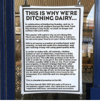 Memes, 🤖, and Ubs: THIS IS WHY WE'RE  DITCHING DAIRY  In celebration of Mothering Sunday, and so, in  celebration of all mothers across the land, from  this Mother's Day forth, we shall no longer sell  coffees with cow's milk.  This poster will explain why we are doing this.  There are alternatives, full of flavour & calcium;  we can even pour hearts on your lattes with them.  Milk is of course a product of motherhood; until  recently, we had not made this connection, and  saw nothing wrong with using good quality milk.  In order to make milk, all animals, whether  human or cow or otherwise, must have a child.  Cows are pregnant with theirs for nine months,  just as we are. The milk they produce is for their  calf in order for us to get it, the calf is taken away  or killed, usually within a day or two. Free-range  and organic, it doesn't change that fact. After  several months of milking, her milk production  drops, so she is made pregnant again. This will  happen from the age of two, to the average age of  six, at which point most dairy cows become too  exhausted  ill or infertile and are slaughtered for  meat.  This is standard practise in the UK.  So from March 26th 2017 this cafe will have a  completely vegan menu. Our intention is to make  veganism delicious, convenient and accessible.  ub More of this, please!! 🙏 Big thanks to @fieldsbeneath for doing the right thing!! govegan dairyisscary vegansofig mercyforanimals loveanimals dairyfree animallovers