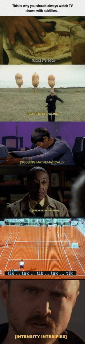 Funny, Spanish, and TV Shows: This is why you should always watch TV  shows with subtitles...  MOLESTS EGG  PEANUTS GROWLING]  SOBBING MATHEMATICALLY  SPEAKING IN SPANISH  tik  tak.., tik .., tak  tik  INTENSITY INTESIFIES] This is why you need to watch TV with subtitles on via /r/funny https://ift.tt/2ClnxGy