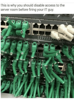 Access, Hope, and Trashy: This is why you should disable access to the  server room before firing your IT guy. I hope that person had to pay to fix it.