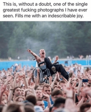 Aww, Fucking, and Memes: This is, without a doubt, one of the single  greatest fucking photographs I have ever  seen. Fills me with an indescribable joy. Memes aren't only here for comedy - they can be incredibly heartwarming too! #Wholesome #Memes #Aww #Inspirational