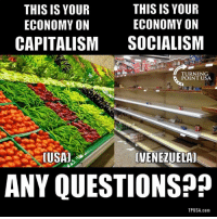 Memes, Capitalism, and Socialism: THIS IS YOUR  ECONOMY ON  CAPITALISM  THIS IS YOUR  ECONOMY ON  SOCIALISM  TURNING  POINT USA  (VENEZU ELA  ANY QUESTIONS??  TPUSA.com