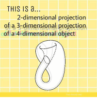 Isa, Projection, and Object: THIS ISa  2-dimensional projection  of a 3-dimensional projection  of a 4-dimensional object The bottle of the ancients https://t.co/UEUcaQXRf8