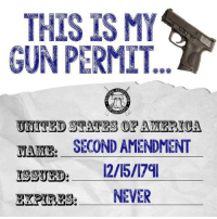 Thanks to the Libertarian Party of West Virginia for this post! To get involved locally, go to lp.org/states!: THIS ISMY  GUN PERMIT  S S  UNITED STATES ORAMERICA  SECOND AMENDMENT  NAME:  12/15/17ql  ISSUED:  NEVER  EXPIRES Thanks to the Libertarian Party of West Virginia for this post! To get involved locally, go to lp.org/states!