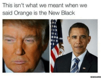 Don't think that's what we mean't.: This isn't What We meant When We  said Orange is the New Black  memes.com Don't think that's what we mean't.