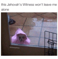 this Jehovah's Witness won't leave me  alone  @Dr Smashlove Getchu a girl whose mama was a jehovah witness. They super freaks 🤗😂😂😂 (@tinderonians 👈)