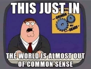 Memes, Common, and Common Sense: THIS JUSTIN  THE WORLDIS LMOSTOUT  OF COMMON SENSE