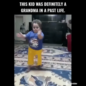 Definitely, Funny, and Grandma: THIS KID WAS DEFINITELY A  GRANDMA IN A PAST LIFE.  mbler RT @StumblerFunny: For more funny videos follow @StumblerFunny or visit https://t.co/wXxwph26cH https://t.co/0bOez4zmkn