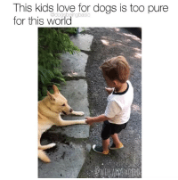 Dogs, Love, and Memes: This kids love for dogs is too pure  for this world  @dogsbeingbasic I want anyone to treat me the way this kid treats dogs. Pup @willardsworld Via @alexispomerleau