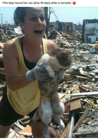 Alive, Memes, and Tornado: This lady found her cat alive 16 days after a tornado