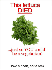 Vegetarian: This lettuce  DIED  ...just so YOU could  be a vegetarian!  Have a heart, eat a rock.