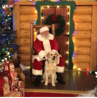 Dank, Santa, and Today: This little guy meeting Santa is everything I needed today 😍🎅