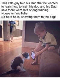 Dad, Videos, and youtube.com: This little guy told his Dad that he wanted  to learn how to train his dog and his Dad  said there were lots of dog training  videos on YouTube  So here he is, showing them to the dog! <p>Small boy teaches smaller g o o d b o y e</p>