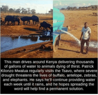 The government does not fix it, no, it has to be one old man.: This man drives around Kenya delivering thousands  of gallons of water to animals dying of thirst. Patrick  Kilonzo Mwalua regularly visits the Tsavo, where severe  drought threatens the lives of buffalo, antelope, zebras  and elephants. He says he'll continue providing water  each week until it rains, and he hopes spreading the  word will help find a permanent solution. The government does not fix it, no, it has to be one old man.