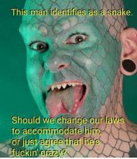 Crazy, Memes, and 🤖: This man identifies a  a enake.  Should we change our laws  to accommodate him,  or just agree hat hes  fuckin Crazy Merica