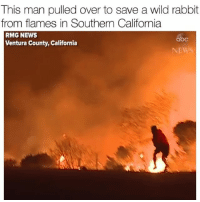 No all heroes wear capes Via @abcnews: This man pulled over to save a wild rabbit  from flames in Southern California  RMG NEWS  Ventura County, California  abc  NEWS No all heroes wear capes Via @abcnews