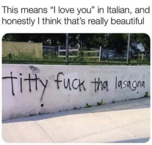 """Beautiful, Love, and Fuck: This means """"l love you"""" in Italian, and  honestly I think that's really beautiful  19  tity fuck tha lesagon so beautiful"""