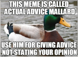 Some Abuse of This Poor Guy Has Been Happening Lately: THIS MEMEIS CALLED  ACTUALADVICE MALLARD  USE HIMFOR GIVING ADVICE  NOTSTATING YOUR OPINION Some Abuse of This Poor Guy Has Been Happening Lately