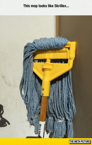 srsfunny:Mop The Bass: This mop looks like Skrillex...  THE META PICTURE srsfunny:Mop The Bass