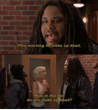 Memes, Movies, and Ups: This morning he woke up dead  n the h  viake up dead?  do you Scary Movie 3