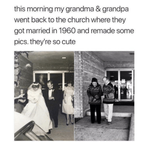 awesomacious:  Super cute!: this morning my grandma & grandpa  went back to the church where they  got married in 1960 and remade some  pics. they're so cute awesomacious:  Super cute!