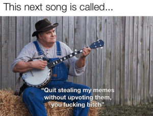 """Bitch, Fucking, and Funny: This next song is called...  """"Quit stealing my memes  without upvoting them,  you fucking bitch"""" I felt like it had to be done"""
