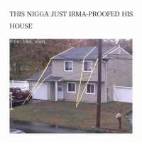 Oh boy. - Follow me (@the_blue_alien) for more!: THIS NIGGA JUST IRMA-PROOFED HIS  HOUSE  @the blue alien Oh boy. - Follow me (@the_blue_alien) for more!
