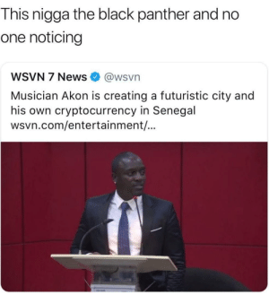 Akoin by tinydancer1995 FOLLOW HERE 4 MORE MEMES.: This nigga the black panther and no  one noticing  WSVN 7 News@wsvn  Musician Akon is creating a futuristic city and  his own cryptocurrency in Senegal  wsvn.com/entertainment/... Akoin by tinydancer1995 FOLLOW HERE 4 MORE MEMES.