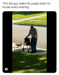 "Bless Up, God, and Gym: This old guy walks his puppy past my  house every evening My auntie is in her 70s. I was telling her about a couple personal records I had set at the gym recently. In her younger age she was athletic as hell - grew up poor and never picked up a tennis racquet until her 30s but when she did...anybody could get it...she put on that tennis skirt and her lil a$$ mobbed on em boy 😂. Anyway when I was done talking she told me: ""beloved, when you're young, you wake up and keep finding out new things that your body is able to do and accomplish. When you're my age, every day you wake up and something is taken away from you."" She wasn't even remotely bitter. She was just giving me the game straight up so as to ensure I don't take my blessings for granted. Never take them blessings for granted, beloveds. Those are a gift. And if you're suffering from any physical limitation or malady whatsoever, I ask God to bless you, protect you and ease it for you! And regardless, no physical limitation could ever limit your spirit and you need to remember that. Bless up 😍❤️ p.s. ""Smash I'm an atheist you don't need to pray for me 😊."" BIH. I AIN'T ATHEIST. GOD BEEN THERE FOR ME HELLA TIMES. SO IF MY PRAYER WORK AND U BLEW YA KNEE OUT AND YA KNEE START FEELING BETTER SOON, DON'T BE ACTING BRAND NEW WITCHOE SMARTY ARTY A$$ MAKING SMARTY ARTY ATHEIST ARGUMENTS. JUST LET ME BELIEVE IN MY ILLOGICAL LIL SPIRITUAL TING AND TAKE THE ILLOGICAL BLESSING, BLESS UP 😂❤️ (📹: reddit u-crotchetyhooker)"