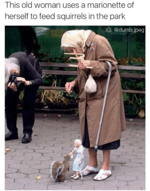 squirrels: This old woman uses a marionette of  herself to feed squirrels in the park  IG: @dumb.jpeg