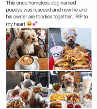 😩: This once homeless dog named  popeye was rescued and now he and  his owner are foodies together... RIP to  my heart  IN 😩