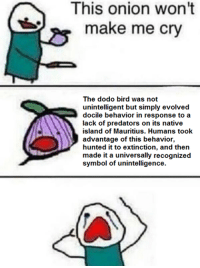 "Dank, Meme, and Http: This onion won't  make me cry  The dodo bird was not  unintelligent but simply evolved  docile behavior in response to a  lack of predators on its native  island of Mauritius. Humans took  advantage of this behavior,  hunted it to extinction, and then  made it a universally recognized  symbol of unintelligence. <p>As If We Needed Another Reason To Self-Hate As A Race via /r/dank_meme <a href=""http://ift.tt/2pQnjOG"">http://ift.tt/2pQnjOG</a></p>"