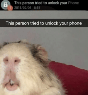 BEHOLD THE UNDERMINER!: This person tried to unlock your Phone  |2018/02/06 5:51  This person tried to unlock your phone BEHOLD THE UNDERMINER!