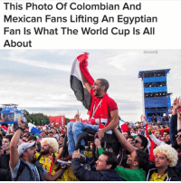Funny, World Cup, and World: This Photo Of Colombian And  Mexican Fans Lifting An Egyptian  Fan ls What The World Cup Is All  About  @world  IFA 💯🌍