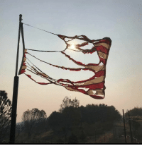 This photo was taken by the West Sacramento Fire Fighters who have been on the Camp Fire in Paradise, California for over a week per their Facebook page.   However, as they posted, though it is burned and battered, our flag still stands. 🇺🇸: This photo was taken by the West Sacramento Fire Fighters who have been on the Camp Fire in Paradise, California for over a week per their Facebook page.   However, as they posted, though it is burned and battered, our flag still stands. 🇺🇸