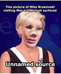 Memes, 🤖, and Mika: This picture of Mika Brzezinski  visiting Mar-aiust surfaced  Unnamedsource Savagery authorized. 😁