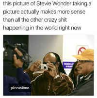 Crazy, Funny, and Shit: this picture of Stevie Wonder taking a  picture actually makes more sense  than all the other crazy shit  happening in the world right now  pizzaslime Actually true (@pizzaslime)