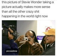 Blackpeopletwitter, Crazy, and Shit: this picture of Stevie Wonder taking a  picture actually makes more sense  than all the other crazy shit  happening in the world right now  pizzaslime <p>Actually true (via /r/BlackPeopleTwitter)</p>