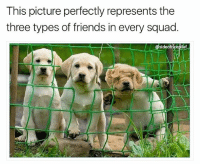 """If this was """"Saved by the Bell,"""" I think we know which MF is """"Screech"""" (@sideofricepilaf): This picture perfectly represents the  three types of friends in every squad  @sideofr cepilaf If this was """"Saved by the Bell,"""" I think we know which MF is """"Screech"""" (@sideofricepilaf)"""