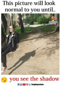 The Shadow, Indianpeoplefacebook, and Shadow: This picture will look  normal to you until.  LAUGHING  you see the shadow  0回(  /laughingcolours