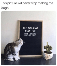 Cats, Bullshit, and Never: This picture will never stop making me  laugh  THE CATS HAVE  BEEN FED  DONT LISTEN TO  THEIR BULLSHIT
