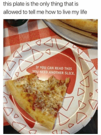 if you can read this: this plate is the only thing that is  allowed to tell me how to live my life  IF YOU CAN READ THIS  YOU NEED ANOTHER SLICE